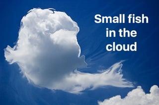big_cloud_fish_thumb-1.jpg
